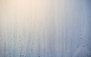 condensats chaudière gaz condensation